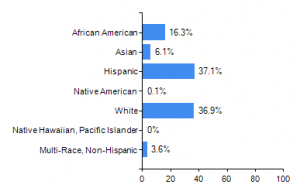 Student Race and Ethnicity (2017)